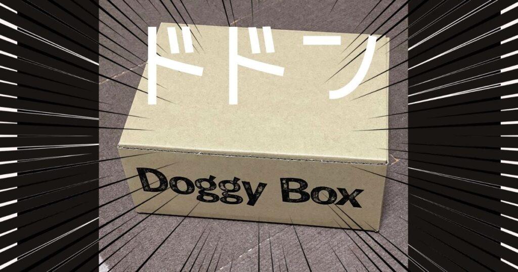 DoggyBoxドギーボックス
