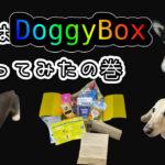 DoggyBox