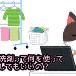 ペットの洗濯って何を使って洗濯していいの?